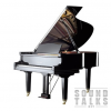 August Foerster Model 190 Grand Piano Master Class