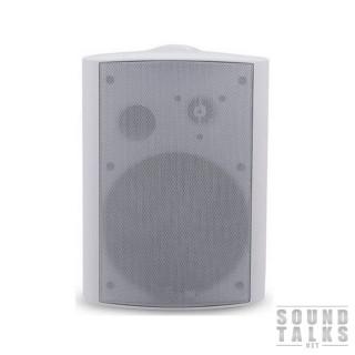 BIG SPK6.5 -100V WHITE